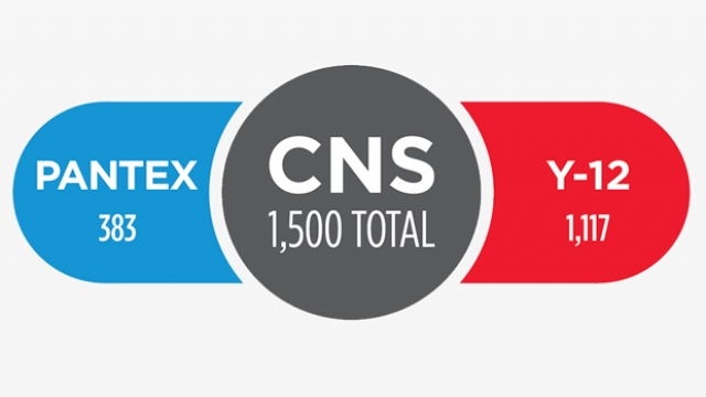 New CNS workforce by the numbers.